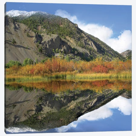 Boulder Mountains Reflected In Beaver Pond, Idaho Canvas Print #TFI128} by Tim Fitzharris Art Print