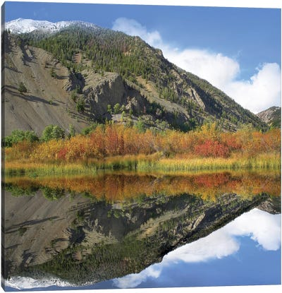 Boulder Mountains Reflected In Beaver Pond, Idaho Canvas Art Print
