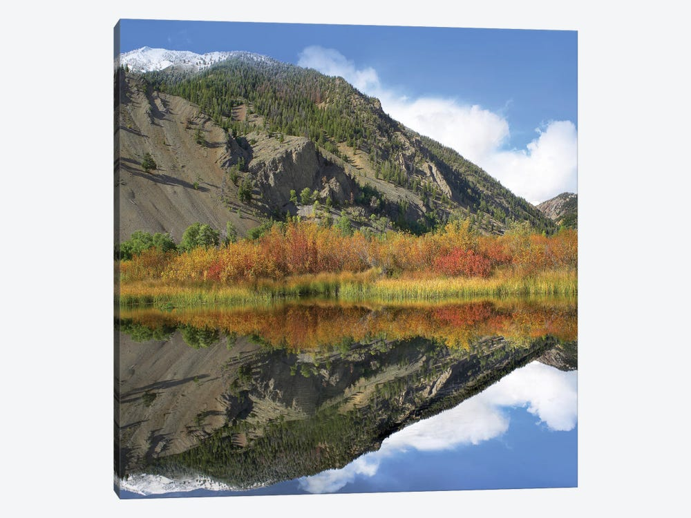 Boulder Mountains Reflected In Beaver Pond, Idaho by Tim Fitzharris 1-piece Canvas Art Print
