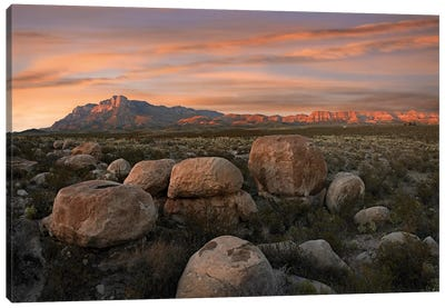 Boulders At Guadalupe Mountains National Park, Texas Canvas Art Print