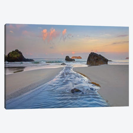 Creek Flowing Into Ocean, Playa Espadilla Sur, Manuel Antonio Np, Costa Rica Canvas Print #TFI1301} by Tim Fitzharris Canvas Art