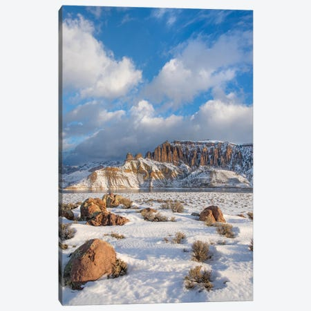Dillon Pinnacles In Winter, Curecanti National Recreation Area, Colorado Canvas Print #TFI1309} by Tim Fitzharris Canvas Artwork