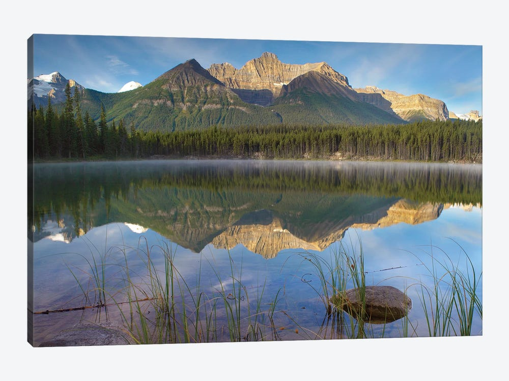 Bow Range And Boreal Forest Reflected In Herbert Lake, Banff National Park, Alberta, Canada by Tim Fitzharris 1-piece Canvas Art