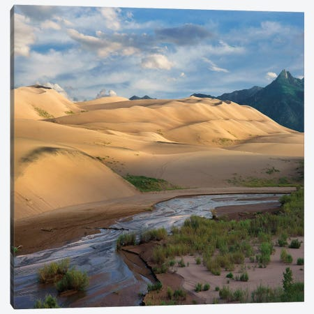 Dunes And River, Great Sand Dunes National Park, Colorado Canvas Print #TFI1313} by Tim Fitzharris Canvas Art Print