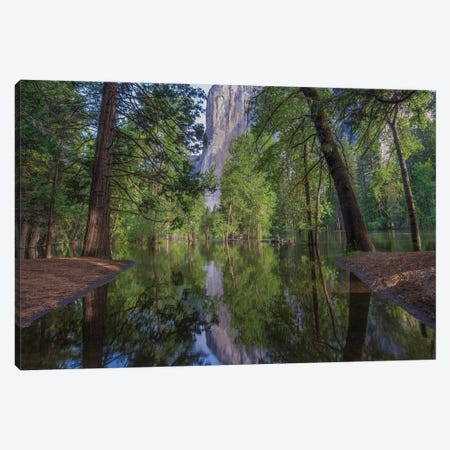 El Capitan From Merced River, Yosemite National Park, California Canvas Print #TFI1316} by Tim Fitzharris Canvas Art