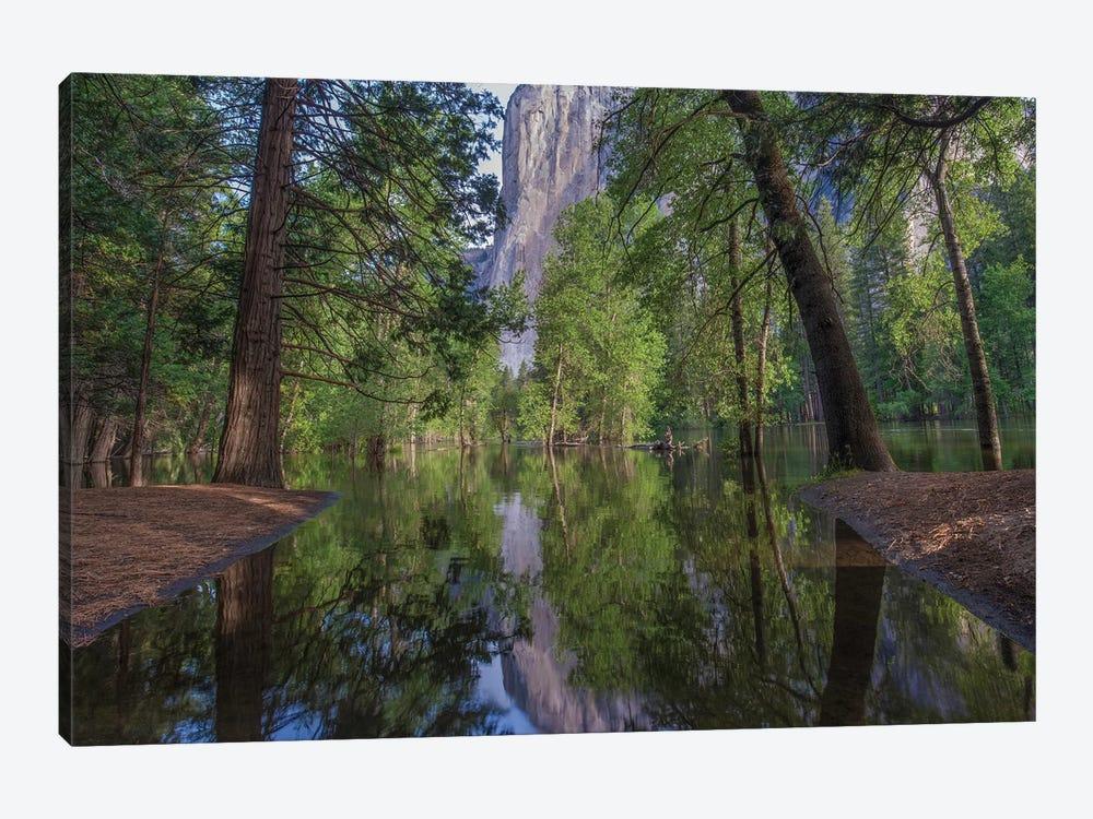 El Capitan From Merced River, Yosemite National Park, California by Tim Fitzharris 1-piece Canvas Art