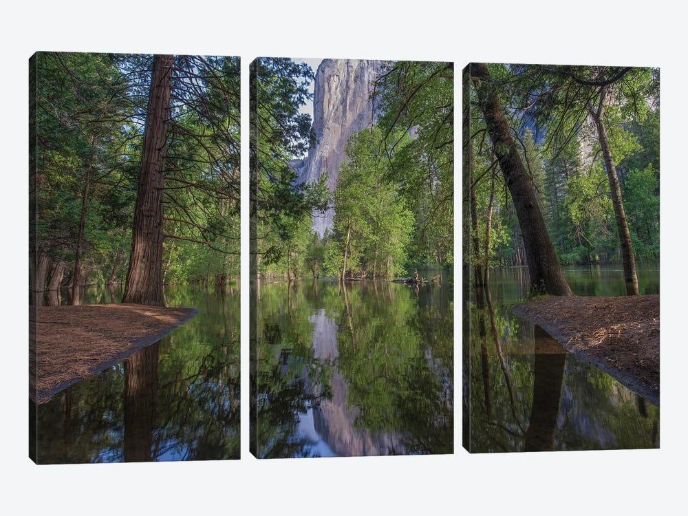 El Capitan From Merced River, Yosemite National Park, California by Tim Fitzharris 3-piece Canvas Wall Art
