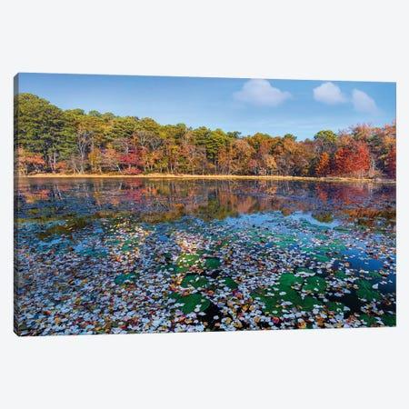 Fallen Leaves On Lake, Daingerfield State Park, Texas 3-Piece Canvas #TFI1317} by Tim Fitzharris Canvas Art