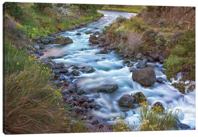 Gardiner River, Yellowstone National Park, Wyoming Canvas Art Print