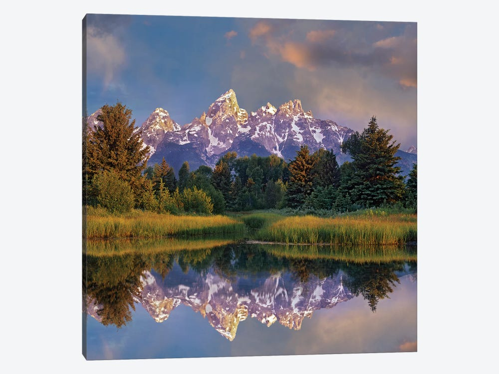 Grand Tetons From Schwabacher Landing, Grand Teton National Park, Wyoming by Tim Fitzharris 1-piece Canvas Art Print