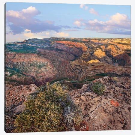 Green River In Canyon, Dinosaur Nm, Colorado Canvas Print #TFI1329} by Tim Fitzharris Canvas Wall Art