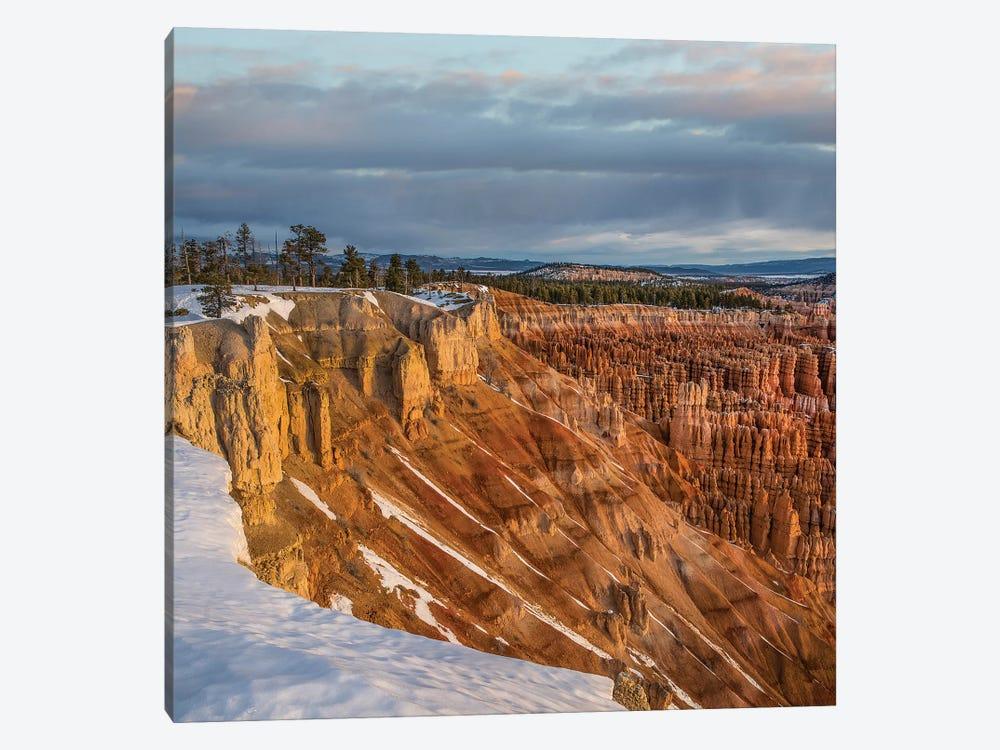 Hoodoos In Winter, Bryce Canyon National Park, Utah by Tim Fitzharris 1-piece Canvas Art