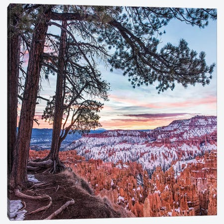 Hoodoos In Winter, Bryce Canyon National Park, Utah Canvas Print #TFI1339} by Tim Fitzharris Canvas Art Print
