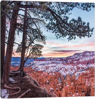 Hoodoos In Winter, Bryce Canyon National Park, Utah Canvas Art Print