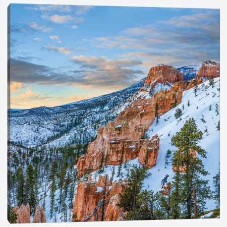Hoodoos In Winter, Bryce Canyon National Park, Utah Canvas Print #TFI1340} by Tim Fitzharris Canvas Artwork