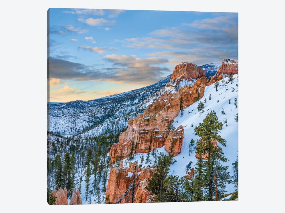 Hoodoos In Winter, Bryce Canyon National Park, Utah by Tim Fitzharris 1-piece Canvas Art Print