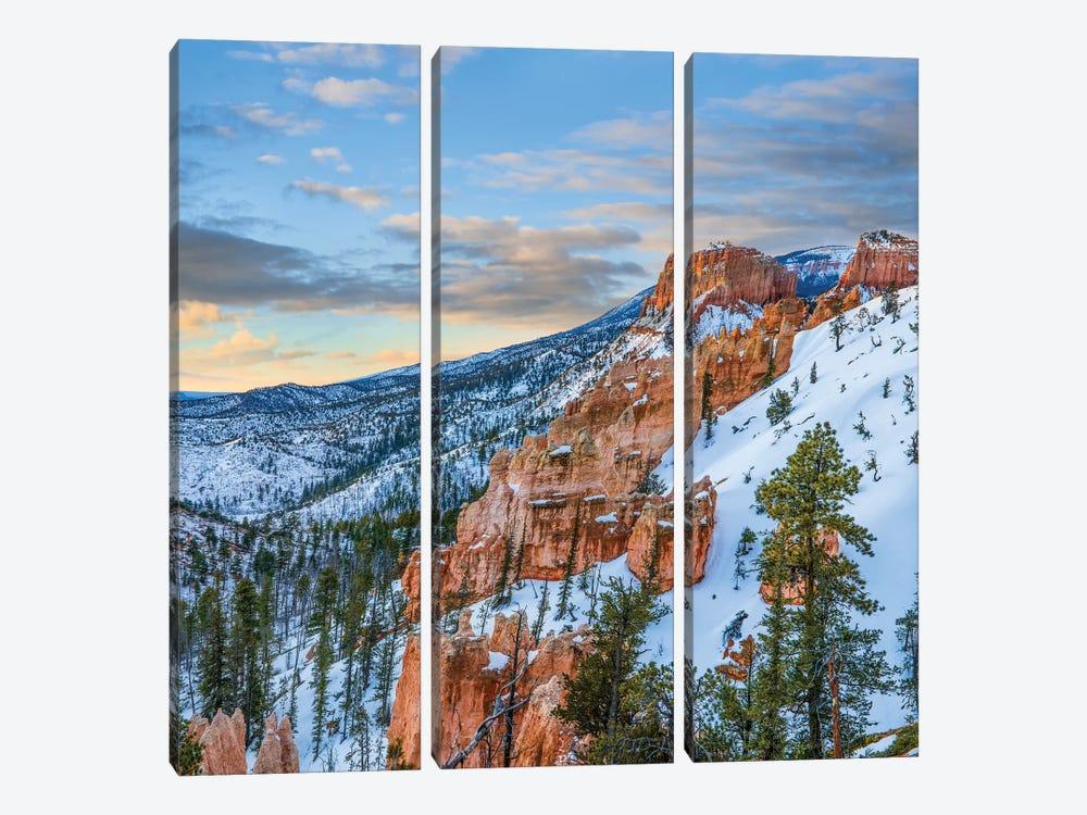 Hoodoos In Winter, Bryce Canyon National Park, Utah by Tim Fitzharris 3-piece Art Print