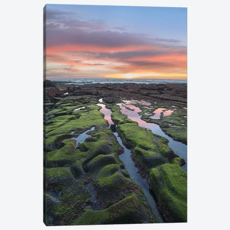 La Jolla Cove Sunset, San Diego, California Canvas Print #TFI1344} by Tim Fitzharris Canvas Art Print