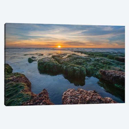 Low Tide Sunset Over Intertidal Zone, La Jolla Cove, San Diego, California Canvas Print #TFI1356} by Tim Fitzharris Canvas Artwork