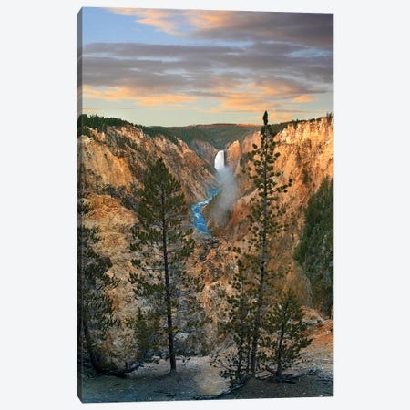 Lower Yellowstone Falls, Grand Canyon Of Yellowstone, Yellowstone National Park, Wyoming Canvas Print #TFI1358} by Tim Fitzharris Canvas Art Print
