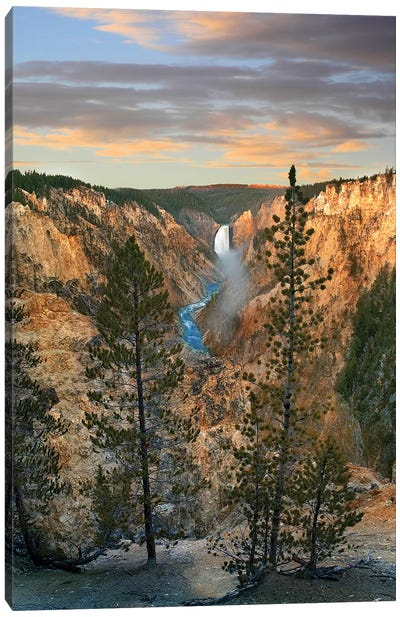 Lower Yellowstone Falls, Grand Canyon Of Yellowstone, Yellowstone National Park, Wyoming Canvas Art Print