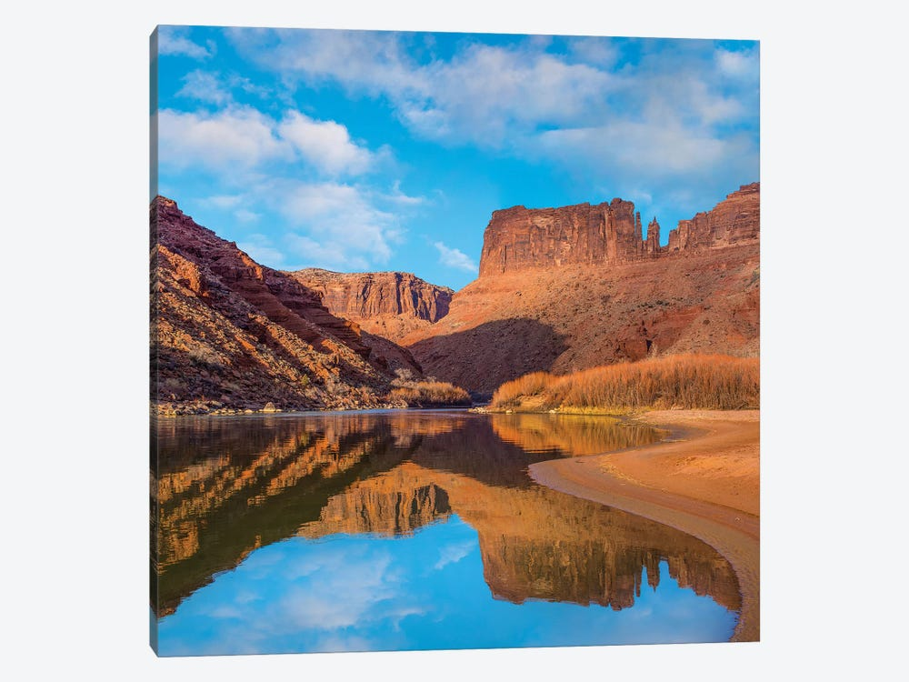 Mat Martin Point And The Colorado River, Arches National Park, Utah by Tim Fitzharris 1-piece Canvas Wall Art