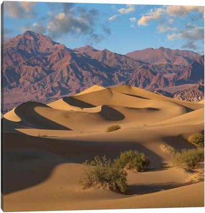 Mesquite Flat Sand Dunes, Death Valley National Park, California Canvas Art Print