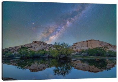 Milky Way, Barker Pond Trail, Joshua Tree National Park, California Canvas Art Print
