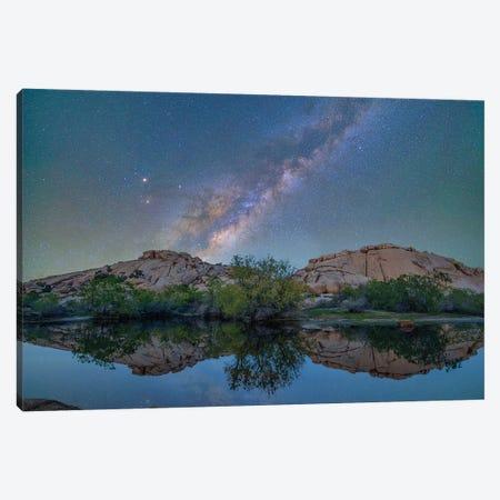 Milky Way, Barker Pond Trail, Joshua Tree National Park, California Canvas Print #TFI1370} by Tim Fitzharris Canvas Print