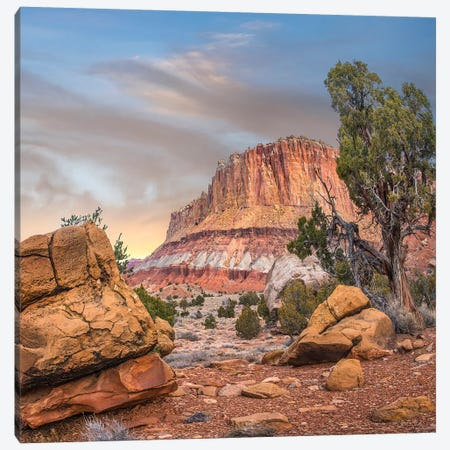 Mountain, Capitol Reef National Park, Utah 3-Piece Canvas #TFI1382} by Tim Fitzharris Canvas Wall Art