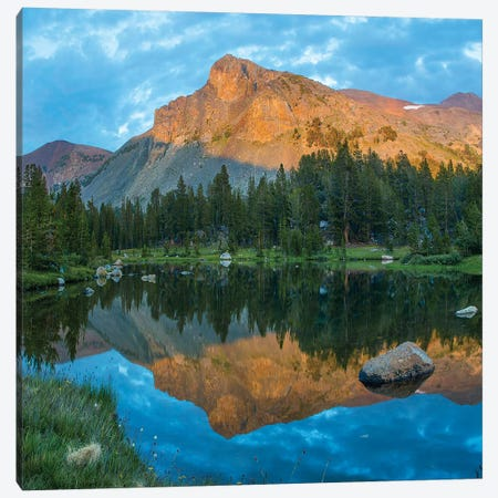 Mt. Dana Reflection, Tioga Pass, Yosemite National Park, California Canvas Print #TFI1384} by Tim Fitzharris Canvas Print
