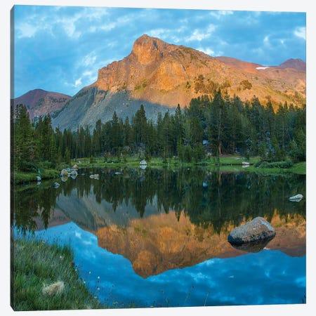 Mt. Dana Reflection, Tioga Pass, Yosemite National Park, California Canvas Print #TFI1384} by Tim Fitzharris Canvas Print
