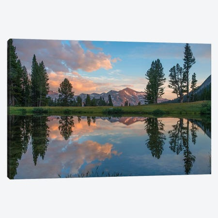 Mt. Dana Reflection, Tioga Pass, Yosemite National Park, California Canvas Print #TFI1385} by Tim Fitzharris Canvas Print
