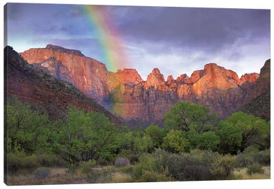Rainbow At Towers Of The Virgin, Zion National Park, Utah Canvas Art Print