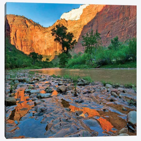 Reflections In Virgin River After Flooding, Zion National Park, Utah Canvas Print #TFI1414} by Tim Fitzharris Art Print