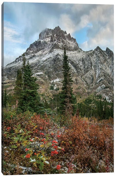 Rising Wolf Mountain, Glacier National Park, Montana Canvas Art Print
