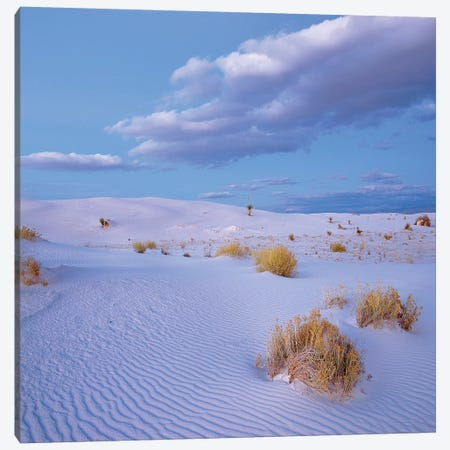 Sand Dunes, White Sands Nm, New Mexico Canvas Print #TFI1434} by Tim Fitzharris Canvas Art Print