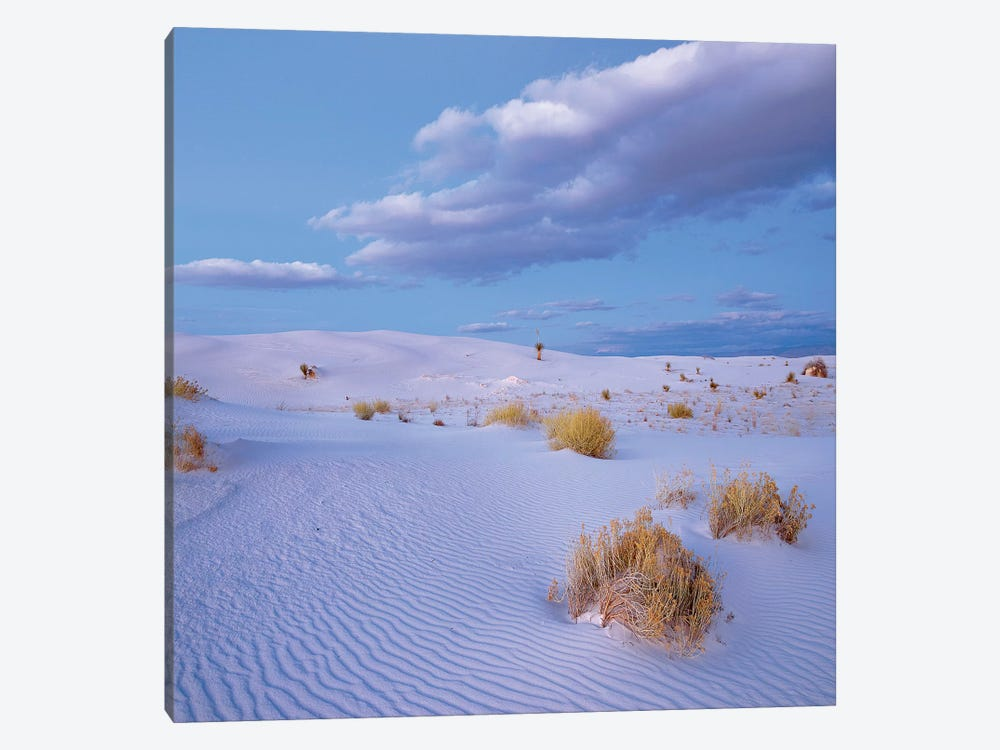 Sand Dunes, White Sands Nm, New Mexico by Tim Fitzharris 1-piece Canvas Print