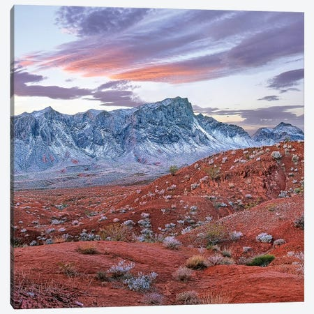 Snow-Covered Muddy Mountains, Valley Of Fire State Park, Nevada Canvas Print #TFI1447} by Tim Fitzharris Canvas Wall Art