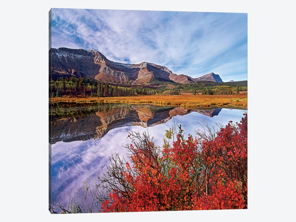 Sofa Mountain Reflecteion, Waterton Lakes National Park by Tim Fitzharris 1-piece Art Print