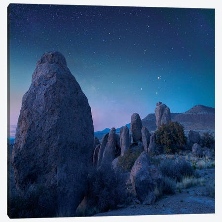 Stars Over City Of Rocks State Park, New Mexico Canvas Print #TFI1450} by Tim Fitzharris Canvas Wall Art