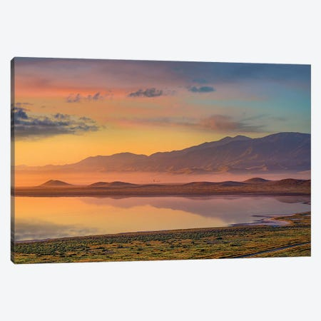 Sunrise And Mountains, Soda Lake, Carrizo Plain Nm, California Canvas Print #TFI1454} by Tim Fitzharris Canvas Print