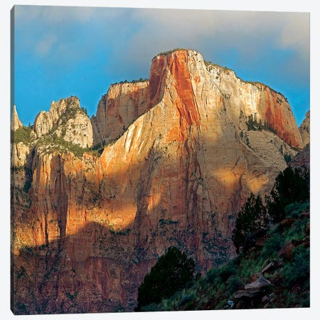Towers Of The Virgin, Zion National Park, Utah Canvas Print #TFI1464} by Tim Fitzharris Canvas Artwork