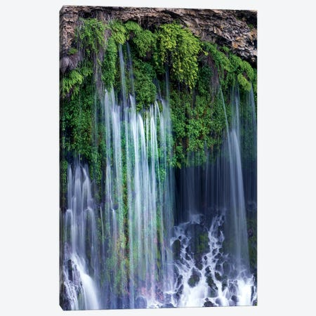 Waterfall, Mcarthur-Burney Falls Memorial State Park, California Canvas Print #TFI1473} by Tim Fitzharris Canvas Artwork