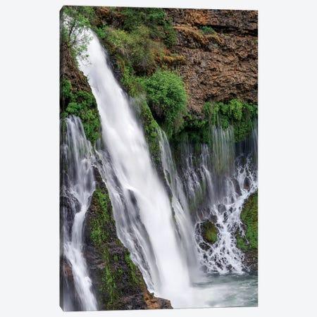 Waterfall, Mcarthur-Burney Falls Memorial State Park, California Canvas Print #TFI1474} by Tim Fitzharris Canvas Art Print