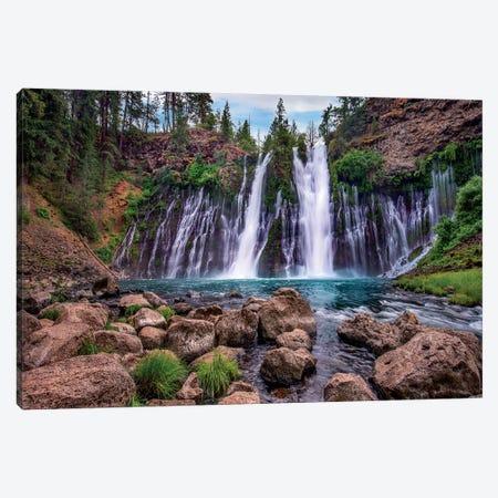 Waterfall, Mcarthur-Burney Falls Memorial State Park, California Canvas Print #TFI1476} by Tim Fitzharris Canvas Art Print
