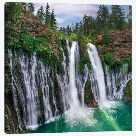 Waterfall, Mcarthur-Burney Falls Memorial State Park, California Canvas Print #TFI1477} by Tim Fitzharris Canvas Art Print