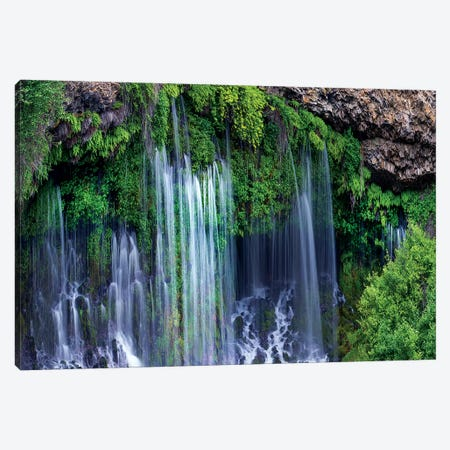 Waterfall, Mcarthur-Burney Falls Memorial State Park, California Canvas Print #TFI1478} by Tim Fitzharris Canvas Art