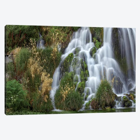 Waterfall, Niagara Springs, Idaho Canvas Print #TFI1479} by Tim Fitzharris Canvas Wall Art