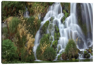 Waterfall, Niagara Springs, Idaho Canvas Art Print